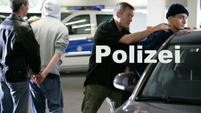Einbrecher festgenommen